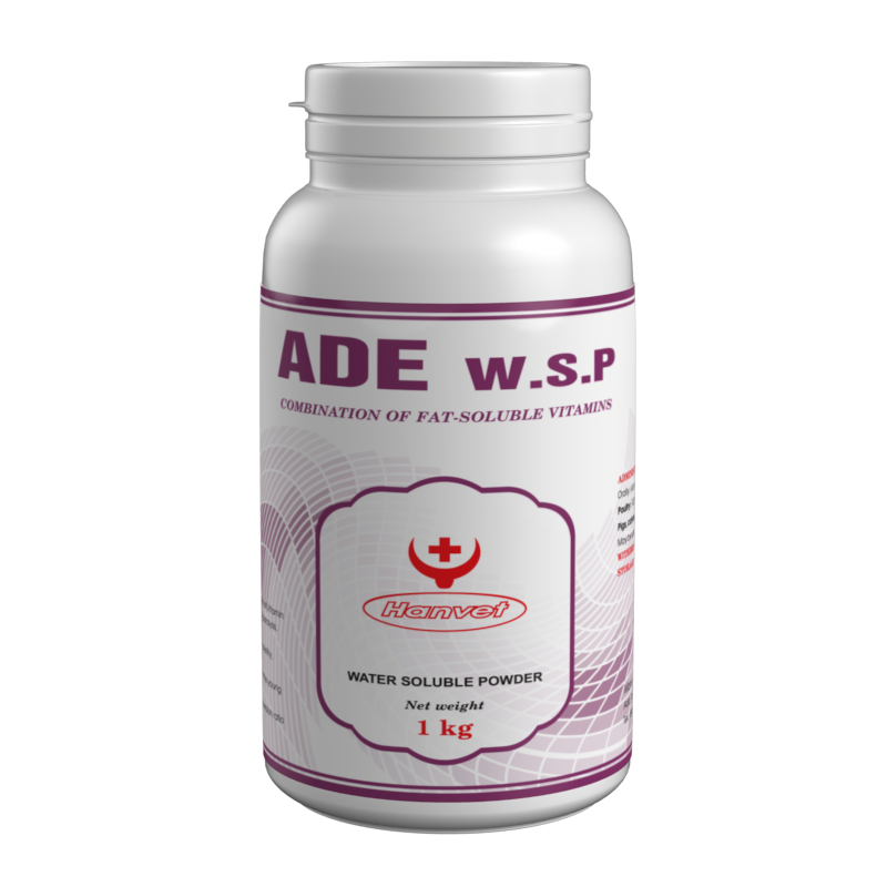 ADE W.S.P