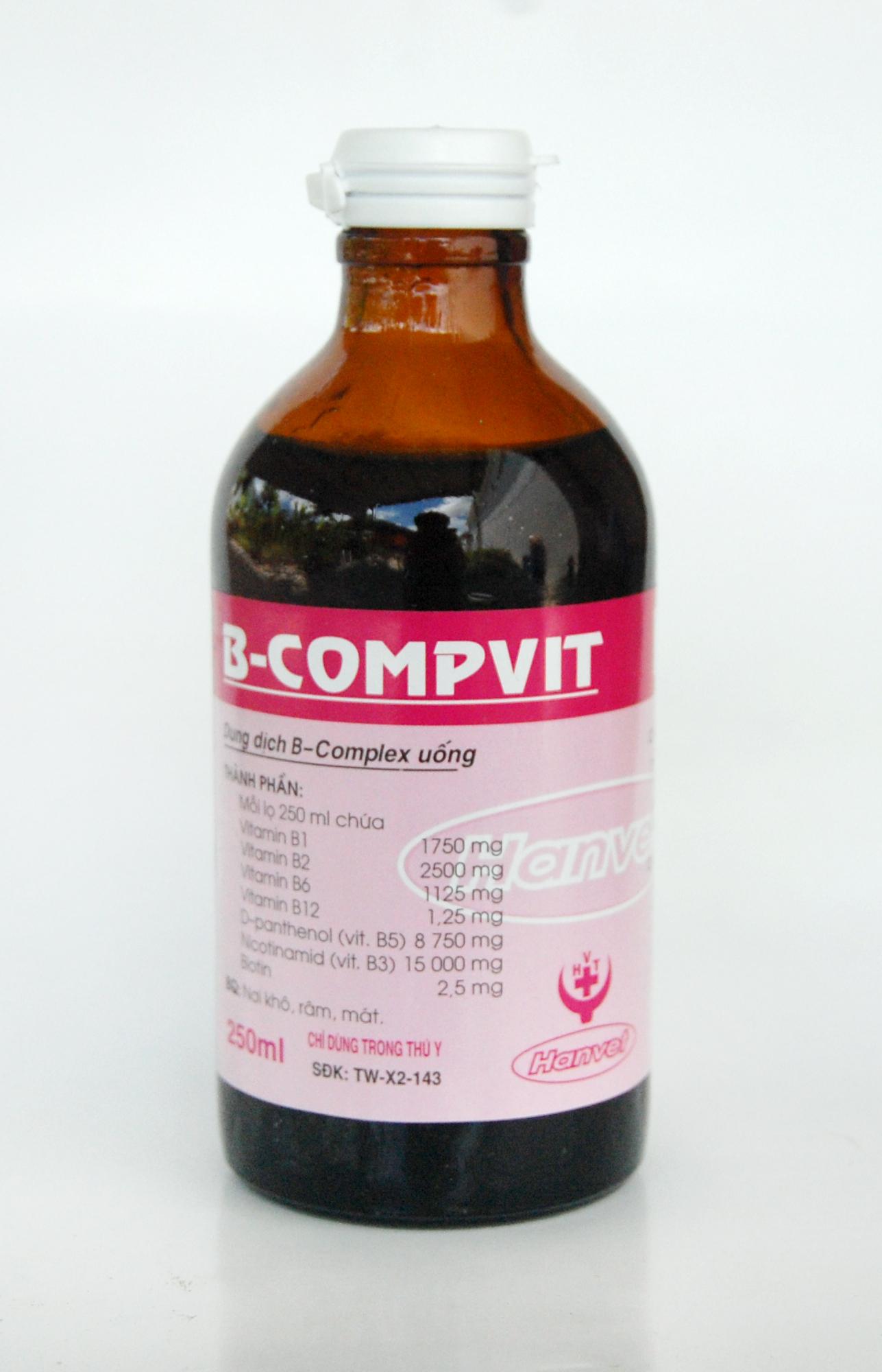 B-COMPVIT